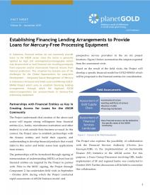 2019-WG2-Establishing Financing Lending Arrangements to Provide Loans for Mercury-Free Processing Equipment